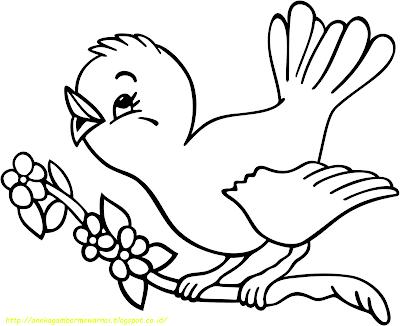 15 Gambar Mewarnai Burung Untuk Anak Paud Dan Tk