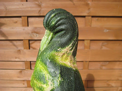 duck-shaped courgette