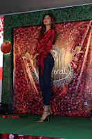 Bollywood Actress Shilpa Shetty Stills in Tight Jeans at Launch Of   0026.jpg