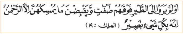 Ayat Al-Quran Tentang Sifat Allah Basar - Maha Melihat