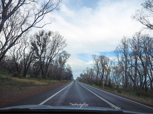 Margaret River Perth Self Drive Holiday Blog : One week Itinerary