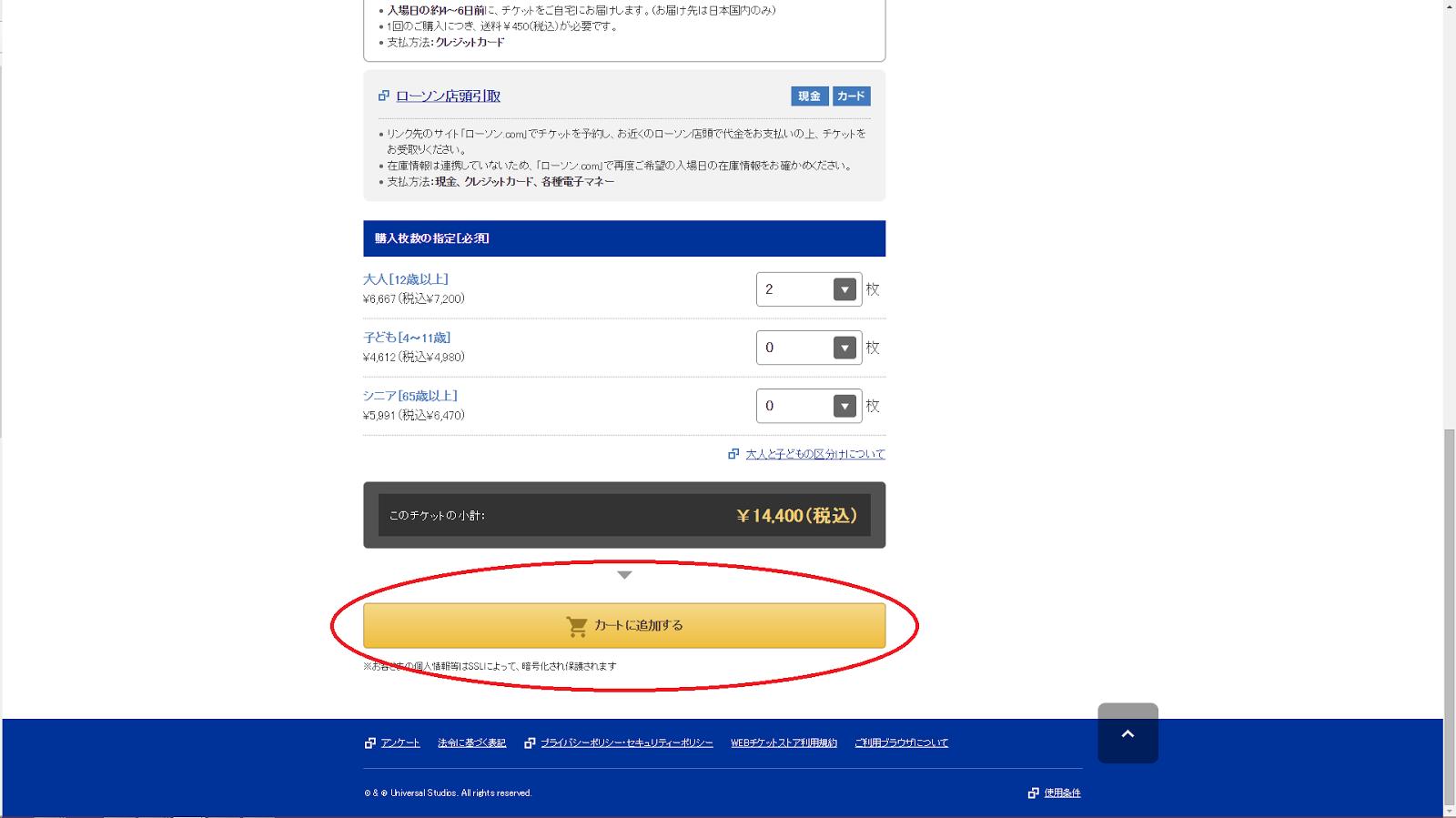 Screenshot of Universal Studios Japan ticket shop - delivery method selection