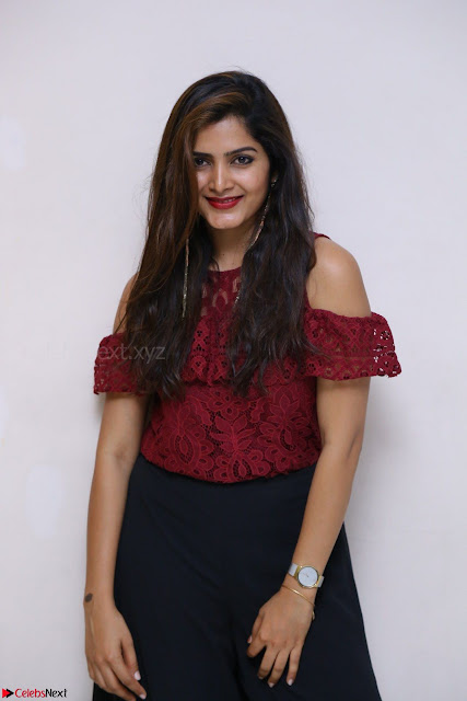 Pavani Gangireddy in Cute Black Skirt Maroon Top at 9 Movie Teaser Launch 5th May 2017  Exclusive 002.JPG