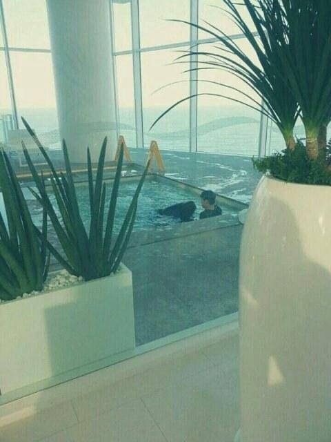 Exo Pool Photoshoot