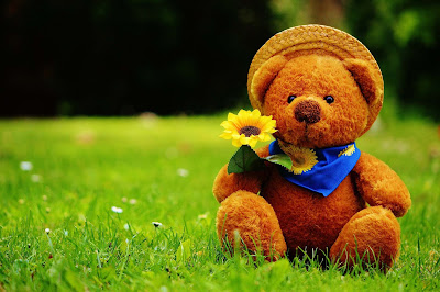 Teddy-Bear-HD-Wallpaper-with-flowers