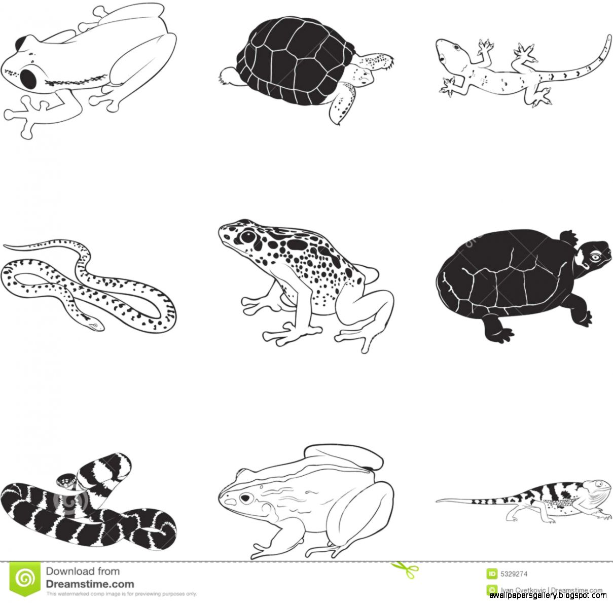 Reptiles Clipart | Wallpapers Gallery