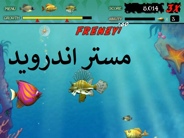 تحميل لعبة السمكة المتوحشة  feeding frenzy للاندرويد وللايفون والكمبيوتر مجانا كاملة