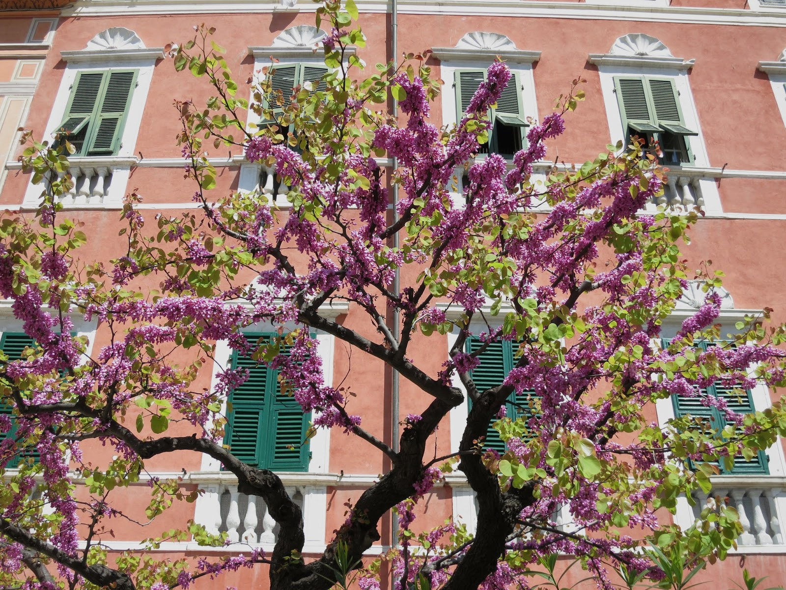 Spring in Lerici, Liguria