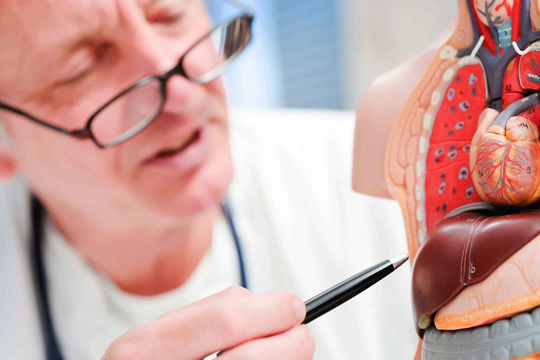 ما هو علاج تضخم الكبد ؟