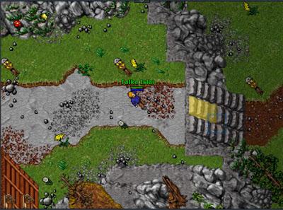 Tíbia, um dos primeiros jogos de MMORPG, lançado em 1997, responsável por difundir o gênero