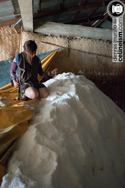 salt farm philippines