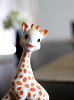 Let's be honest. Sophie the Giraffe is catnip for babies, right?