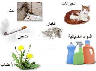 حساسية الغبار، شعر الحيوانات، ريش الطيور و حبوب اللقاح