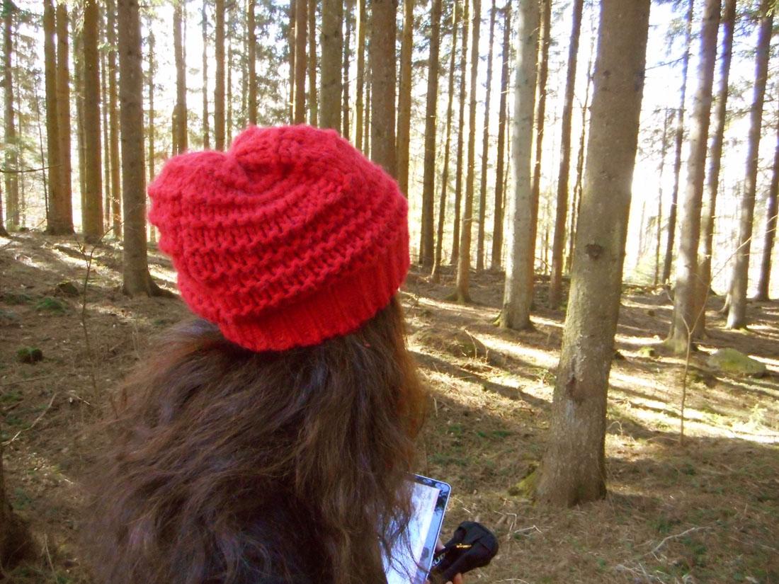 In bosco, settimana 12