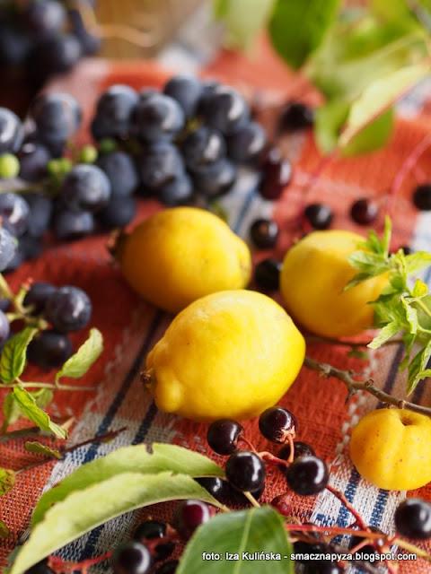 nalewka, nalewki domowe, wodka owocowa, pigwowiec, czeremcha, winogrona, mieta, przetwory, alkohol,
