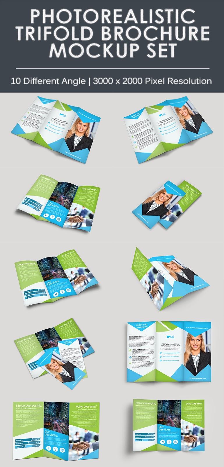 10 TriFold Brochure Mockups