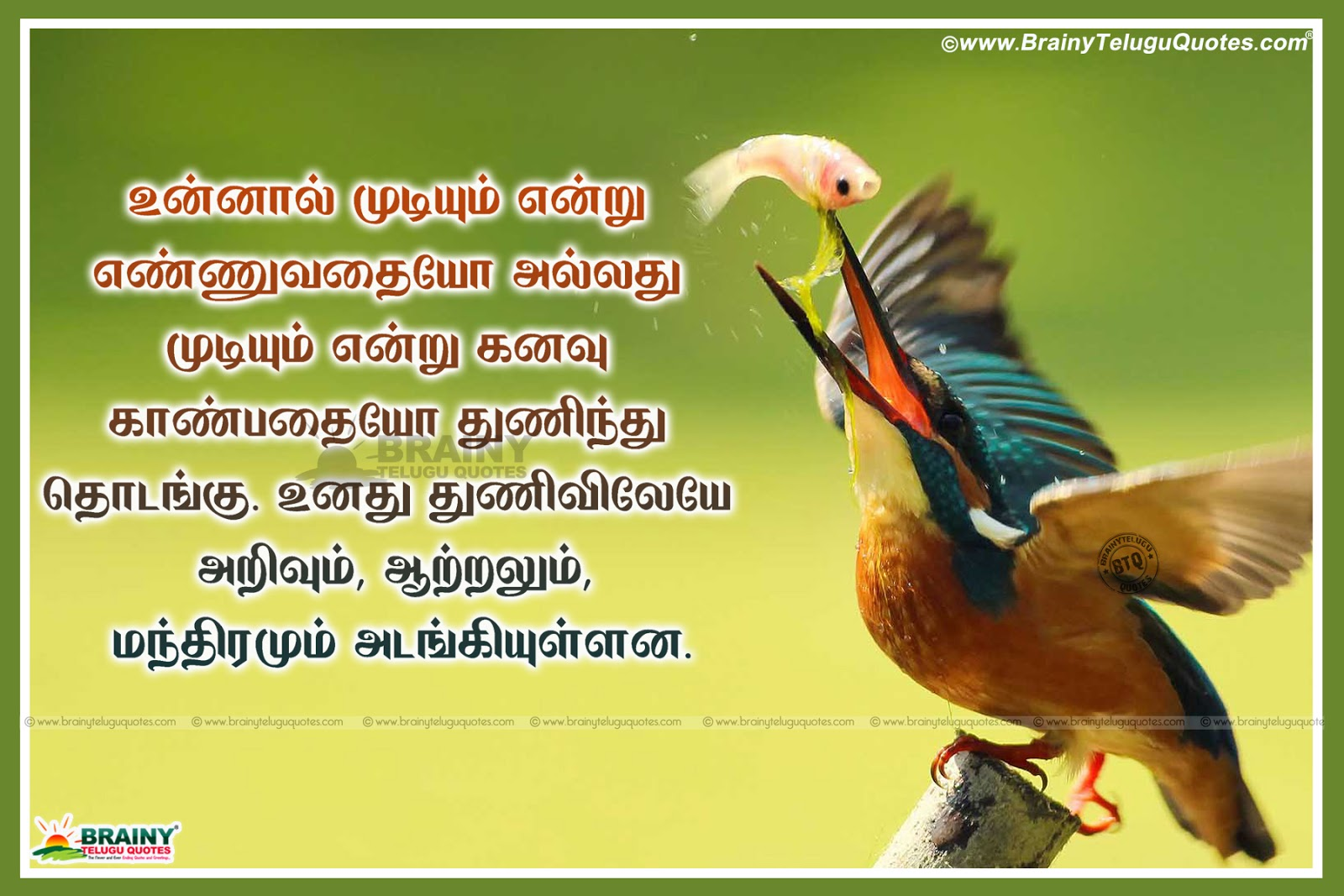 Pictures Of Tamil Quotes On Success In Tamil Language Kidskunstinfo