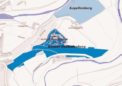 Weinberg Kloster Disobodenberg an Nahe und Glan