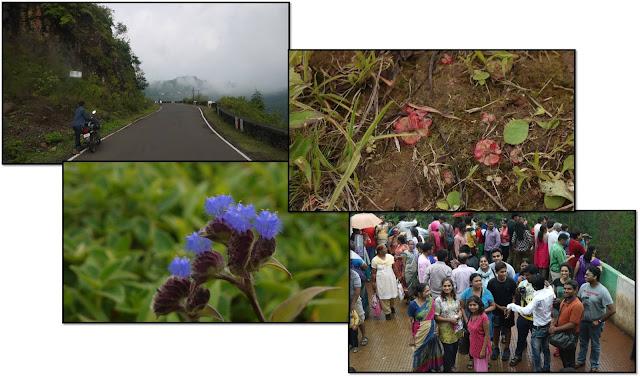 Kaas plateau trek 1&2 Oct 16