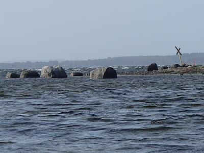 Skuldelev Strand- Selsø Hage. Onsdag den 28. september 2016 P9280007