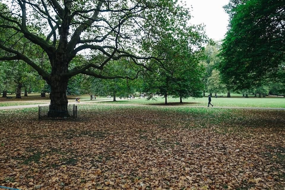 グリーン パーク(Green Park)