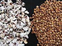 Mini-popcorn (PopSorg)