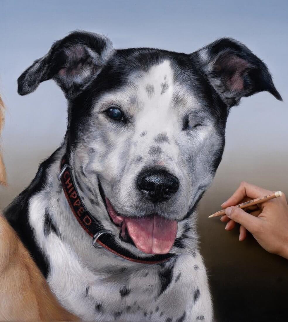 07-Buster-Patricia-Otero-Cats-and-Dogs-Portrait-Artist-www-designstack-co