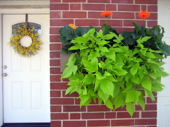 Hanging greenery makes this floating planter box look even more amazing against the brick wall