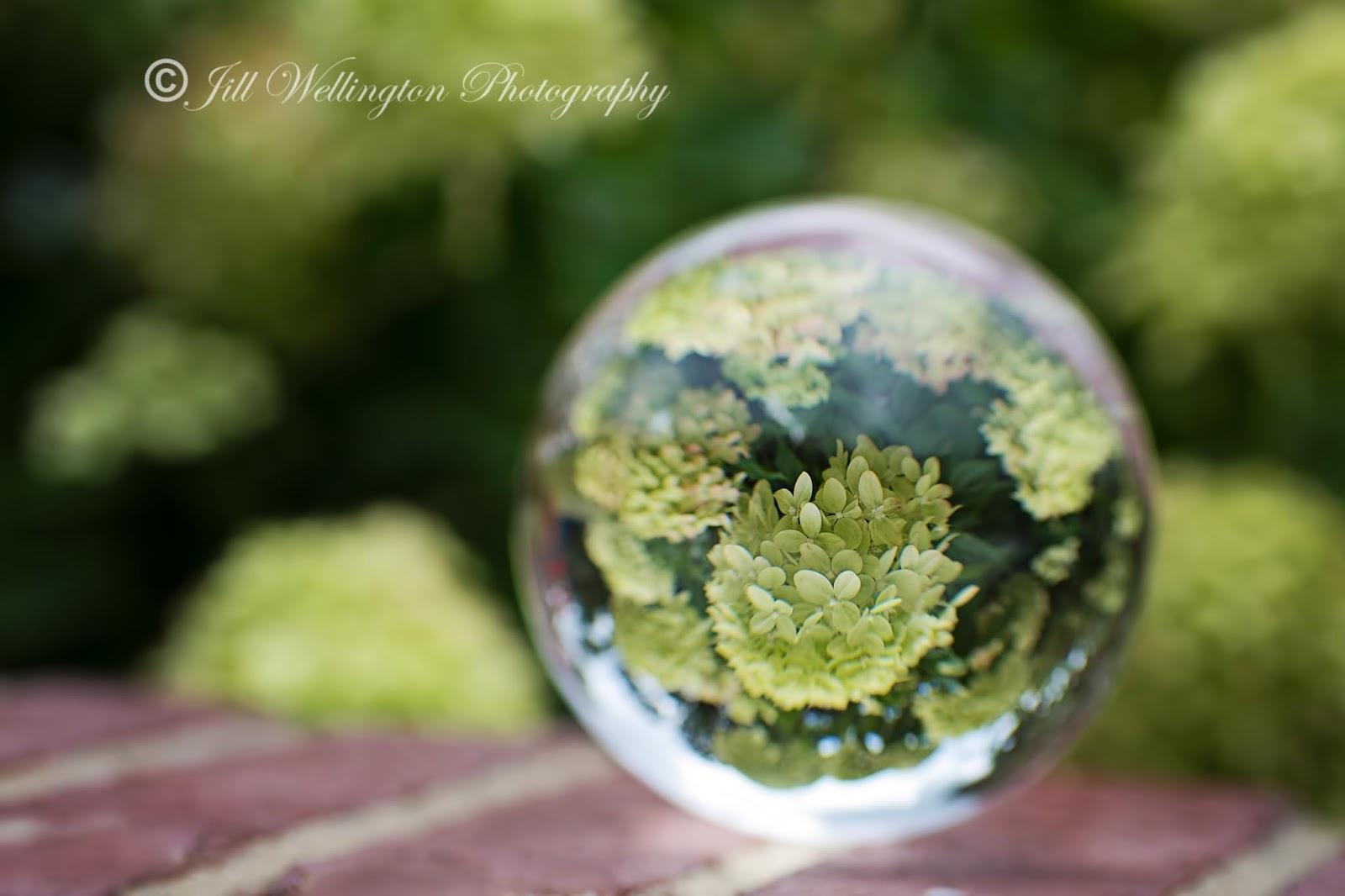 For Photographers: Crystal Ball Photography