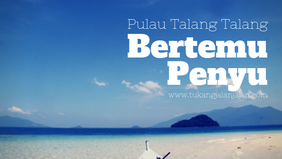 Bertemu Penyu di Pulau Talang Talang