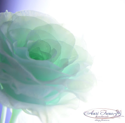 Monochrome transparent green rose