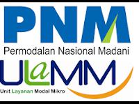 Lowongan Kerja 2016 Terbaru SMK/D3 PT PNM (Persero)