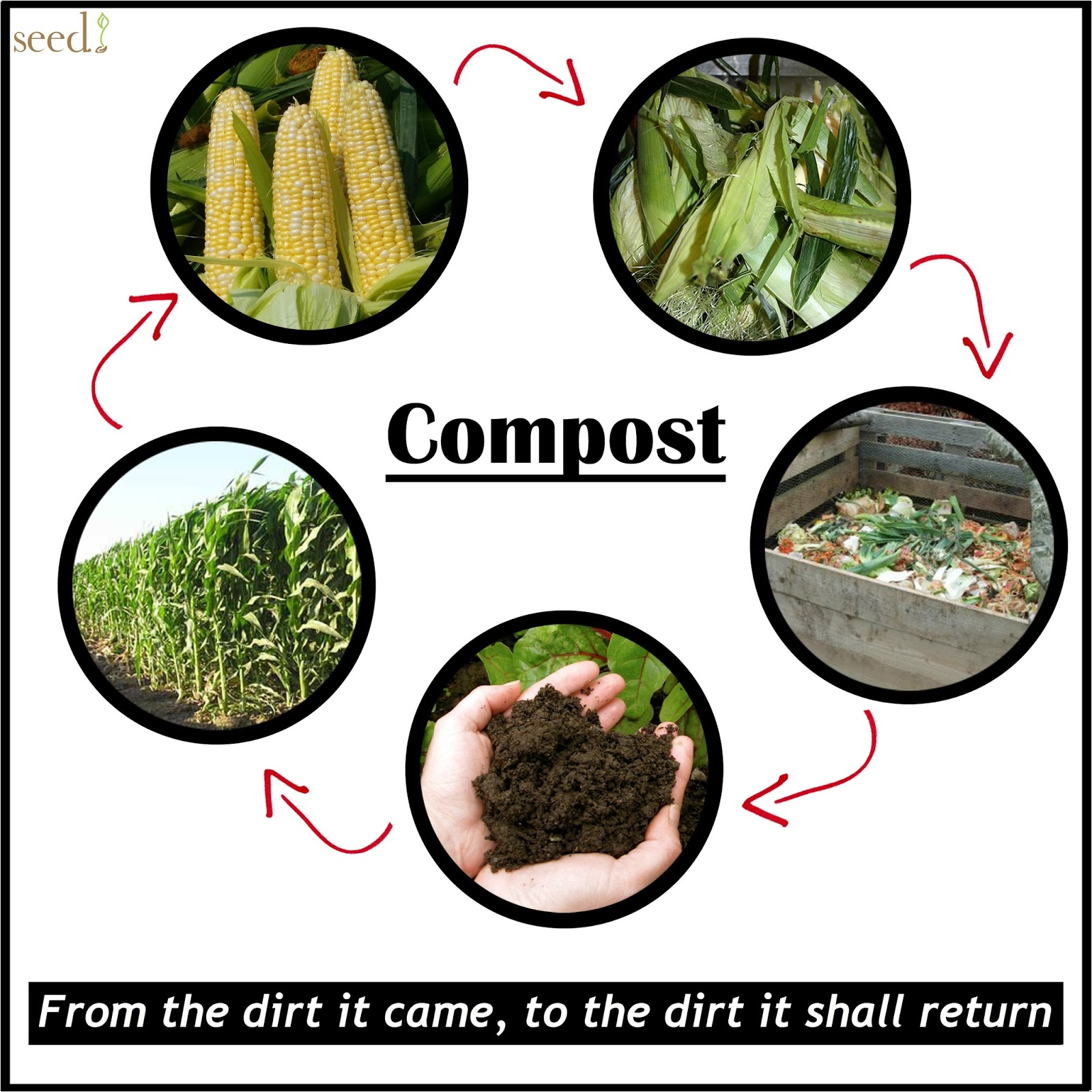 Every Day Is Special: May 29 – Learn About Composting Day