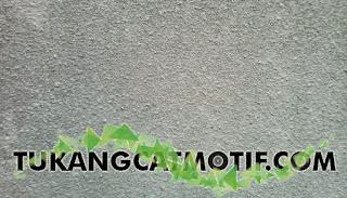 Jasa Cat Dinding Tekstur Semprot Murah