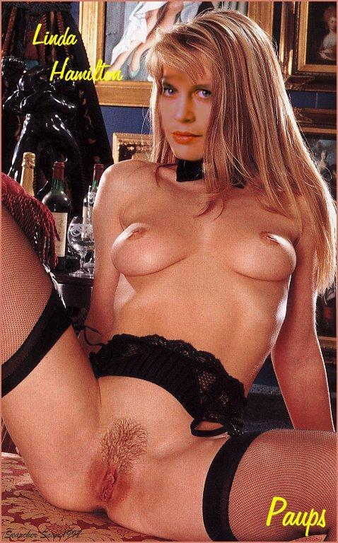 Linda Hamilton Porn - Big Nipples Fucking-6286