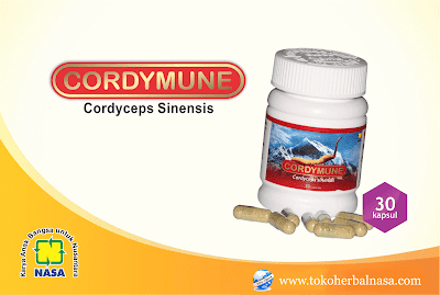 herbal-nasa-Cordymune-supelmen-kesehatan-dan-obat-sembuh-penyakit-hati