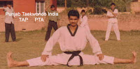 Master Er. Satpal Singh Rehal in action doing Taekwondo side stretching, Garhshankar, Hoshiarpur, Mohali, Chandigarh, Punjab, India, Patiala, Jalandhar, Moga, Ludhiana, Ferozepur, Sangrur, Fazilka, Mansa, Nawanshahr, Ropar, Amritsar, Gurdaspur, Tarn taran, Martial Arts Tkd Training Club, Classes, Academy, Association, Federation