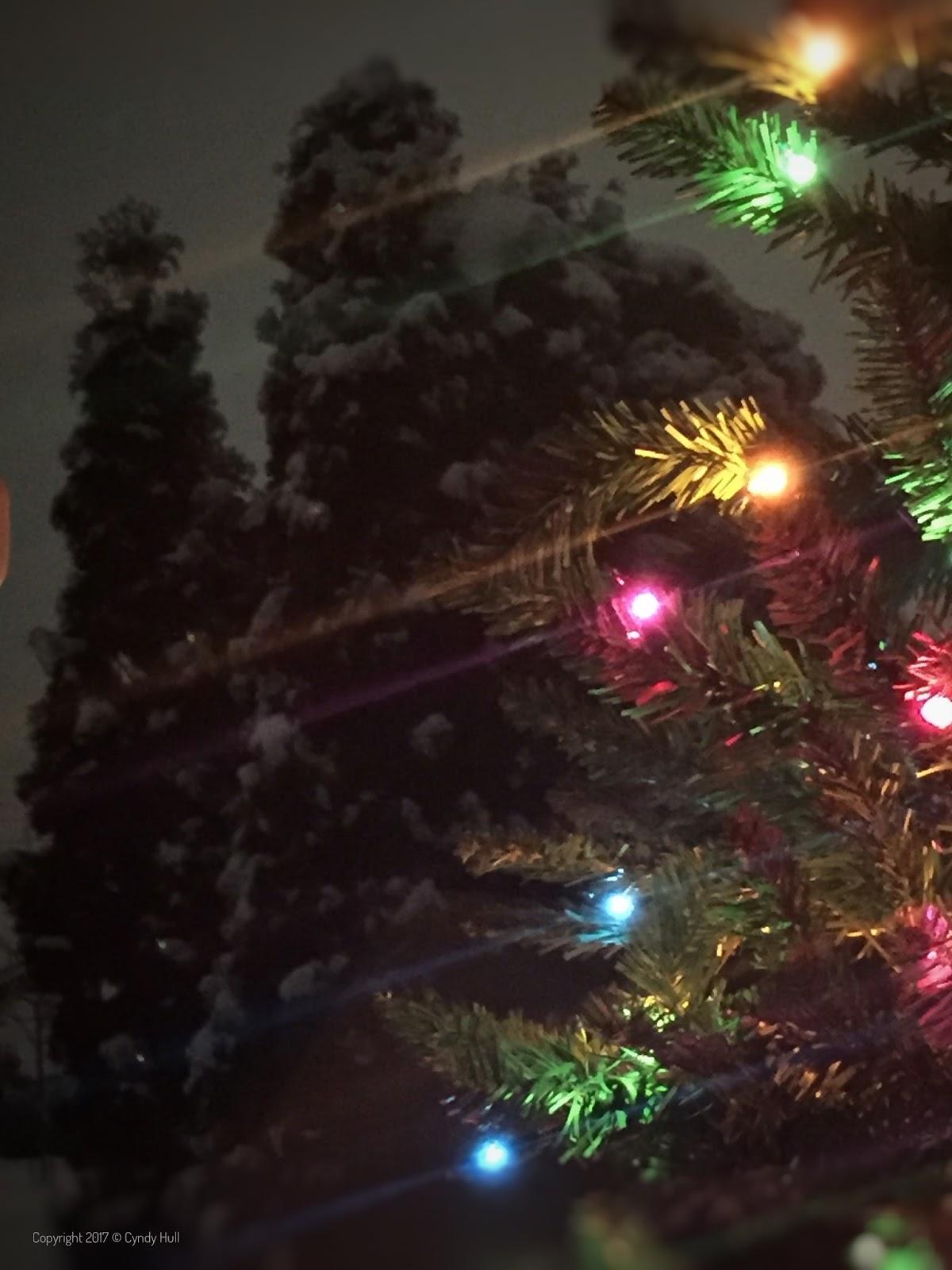 Montana 1 A Day Ukrainian Christmas Greetings Missoula Montana