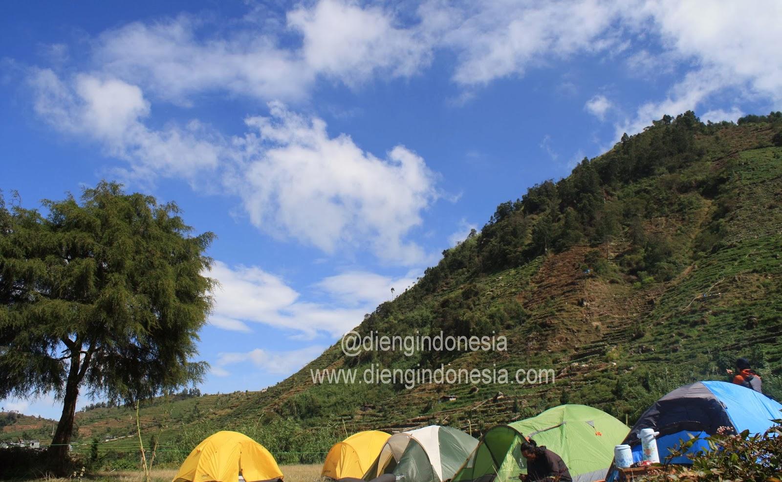 Camping Ceria Sikunir Dieng