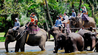 Gajah, bali