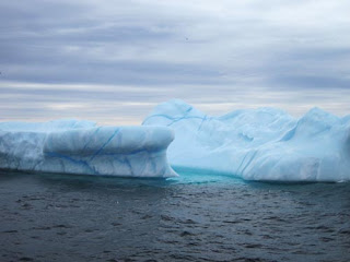 Iceberg Alley.