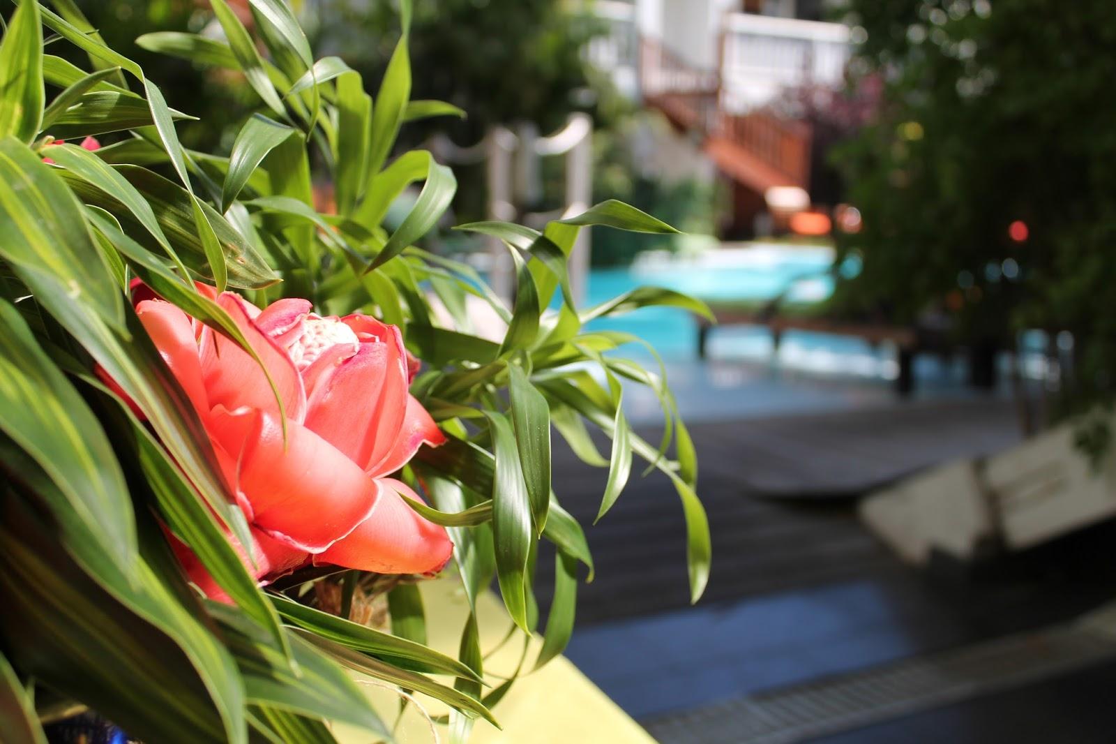 gotoreunion ile de la réunion océan indien lagon hôtel 3 étoiles calme tranquille beau magnifique piscine swalibo plage joli suite chambre séjour rêve les gommettes de melo voyage vacances où loger séjourner