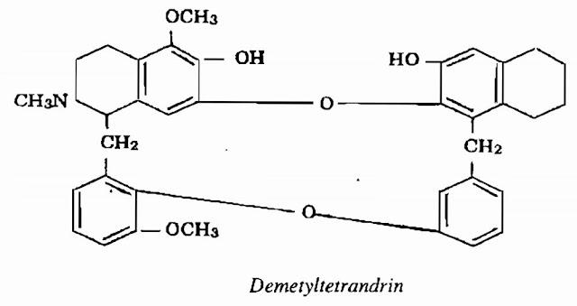 TPHH Phấn phòng kỷ - Stephania tetrandra - Nguyên liệu làm thuốc Chữa Tê Thấp và Đau Nhức