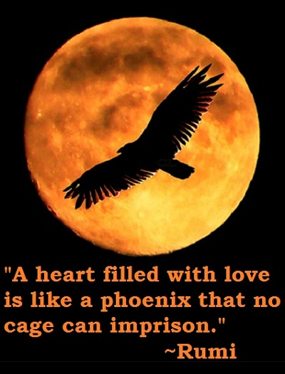 Maulana rumi online 400 rumi quotes the essence of god is love and the sufi path is the path of love love is to see what is good and beautiful in everything it is to learn from everything voltagebd Images