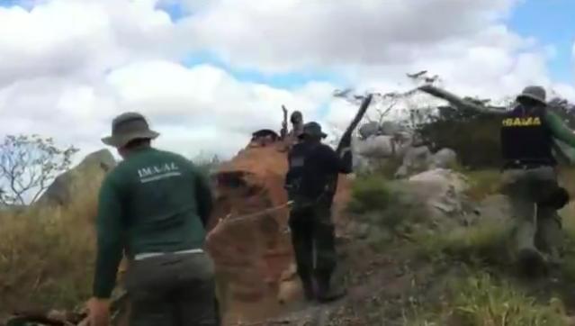 Em Delmiro Gouveia, Olho D'Água do Casado, Pariconha e Piranhas, operação integrada flagra desmatamento em mais de 2 mil hectares de vegetação nativa da caatinga