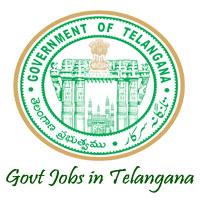 TVVP jobs,latest govt jobs,govt jobs,latest jobs,jobs,telangana govt jobs,DAS jobs