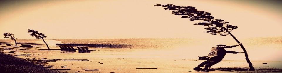 Resultado de imagem para foto de vento contrário
