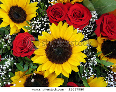 Best Islamic Hd Wallpapers For Desktop Beautiful Red Flowers Wallpapers Latest News
