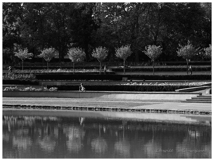 sadzawka w Parku Cytadela w Poznaniu