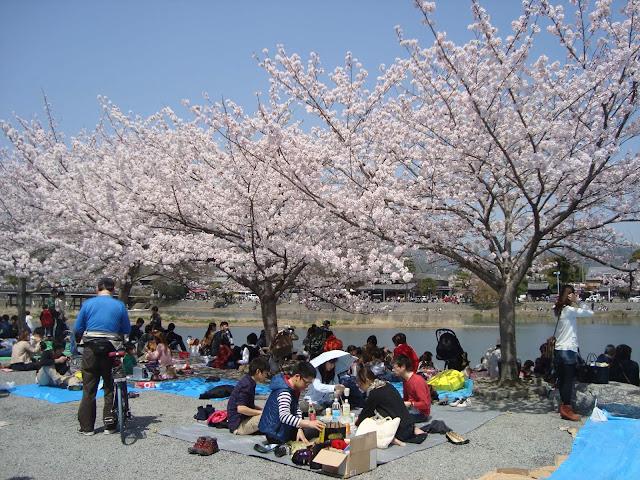 Review Wisata Arashiyama
